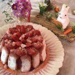 charlotte toute rose aux mures fraises et framboises